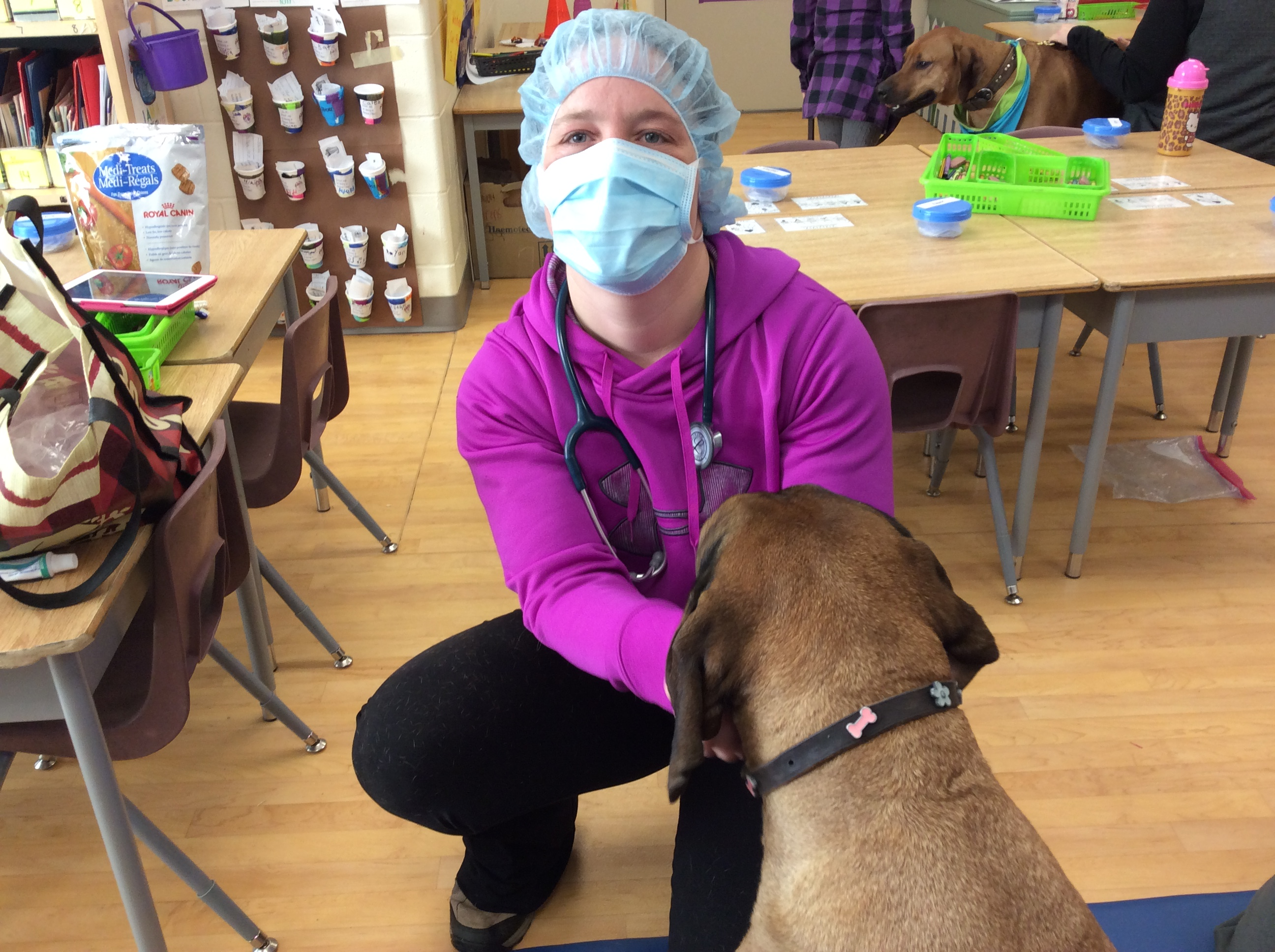 teaching kids about how to treat dogs