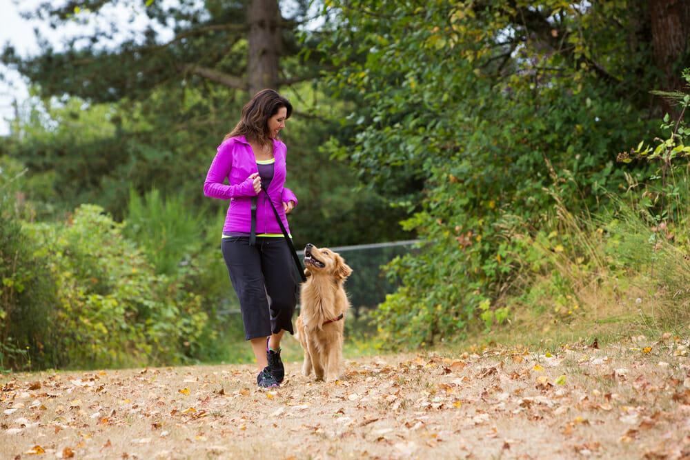 A woman walking a dog on a trail